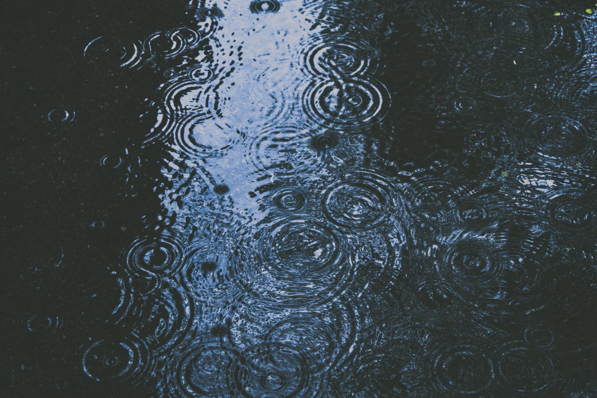 Sehr regnerisches Wetter. Diesen Mittwoch geht der Herbst in Potsdam los
