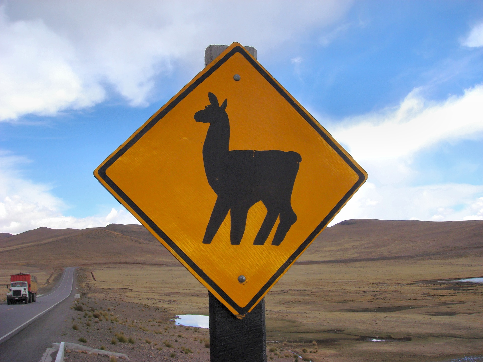 Lama Warnschild